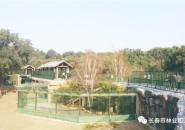 """长春动植物公园""""猛兽谷""""升级改造完工重新开放"""