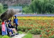 各地有序重启乡村休闲旅游市场 乡村旅游产业已基本恢复