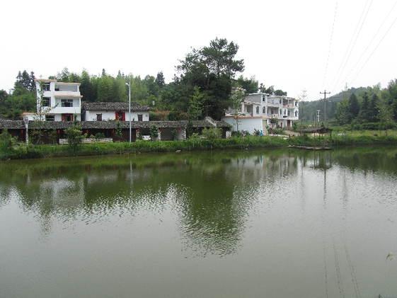 南坑村村容整洁,环境优美。