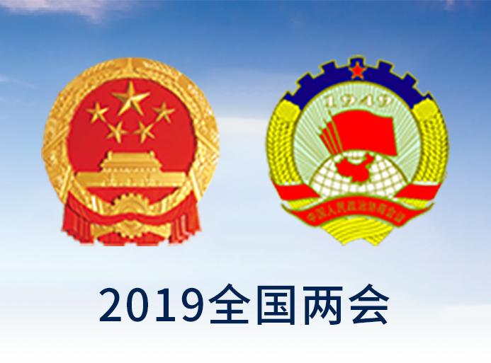 第十三届全国人民代表大会第二次会议关于2018年国民经济和社会发展计划执行情况与2019年国民经济和社会发展计划的决议