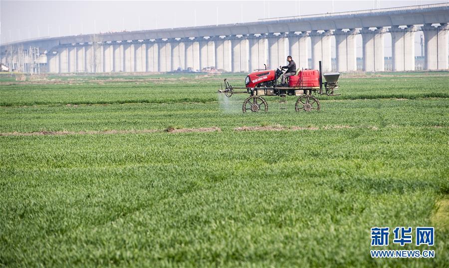 (图文互动)(2)绿色点染希望的田野——全国春耕生产形势综述
