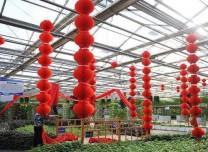 第九届吉林冬季农博会2月2日开展 300张门票免费送