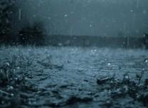 紧急通知:我省中东部将有大到暴雨 可能致灾!
