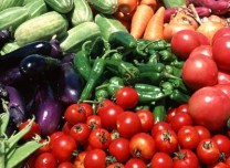 一季度农产品市场运行总体稳定 价格呈季节性上涨走势
