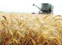 图解丨2019年重点强农惠农政策来了!这些补贴奖励你一定想知道