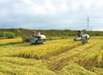万博手机注册春耕陆续启动 确保粮食作物播种面积达到8000万亩以上