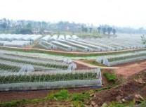 九部門合力解難題 推進現代農業發展