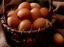 """你真的会吃鸡蛋吗?快来看这份靠谱的""""吃蛋指南"""""""