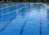 公共泳池很脏、婴幼儿游泳好处多……事实如此吗?