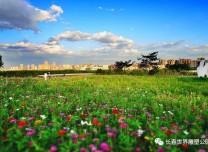 第十二届东北亚博览会期间 长春雕塑公园实行通票7折