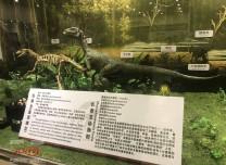 约吗?净月潭沉浸式恐龙展览馆今天正式开馆