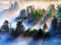 延边仙峰国家森林公园风景这边独好