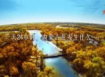一天24小時,內蒙古在發生什么?