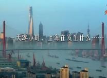 一天24小時,上海在發生什么
