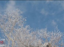 美!延边仙峰森林公园迎今冬首次高山雾凇景观