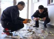 涉案金额320万 延吉警方破获特大非法销售珍贵野生动物及其制品案