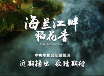 吉视出品三集纪录片《海兰江畔稻花香》明天登陆央视纪录频道