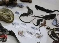 吉林省破获跨省特大非法收购、出售珍贵濒危野生动物制品案