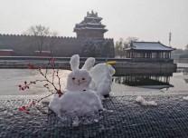 故宮公布春節開放時間:這次周一不閉館