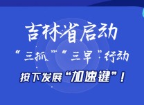 "H5 | 吉林省启动""三抓""""三早""行动,按下发展""加速键""!"