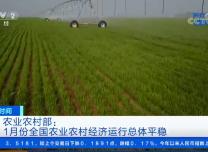 农业农村部:1月份全国农业农村经济运行总体平稳