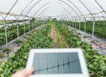 【地評線】齊魯網評:瞄準智慧新農具,推動農業高質高效發展