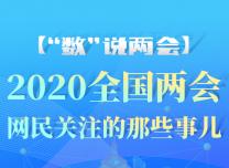 """【""""數""""說兩會】2020全國兩會 網民關注的那些事兒~"""