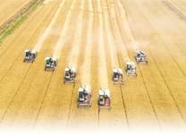 今年全國糧食產量預計達6.7億噸