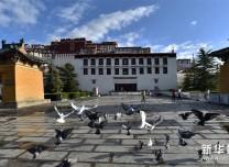 世界文化遺產布達拉宮、羅布林卡3日恢復對外開放