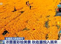 全國進入秋收時節   濃墨重彩繪美景 秋收喜悅入畫來