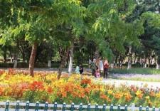 約!長春市動植物公園繁花錦簇美不勝收