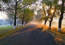 晴空一鹤排云上 便引诗情到碧宵 来到秋天的净月潭采摘绚丽风景
