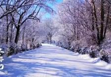 冬游吉林丨雪遇龍灣,邂逅最美的輝南冰雪王國