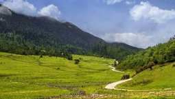 自然资源领域11个项目入选国家重点研发计划 总经费超2.5亿