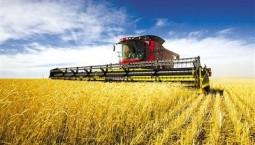 夯实农业农村优先发展基础