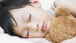 熬夜学习不可取 专家:睡得越好 效率越高