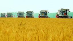 5年增产15亿公斤粮食,长春市是如何做到的?