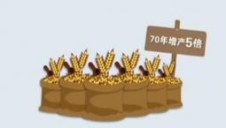 數說新中國丨五種主要糧食產量多年世界第一