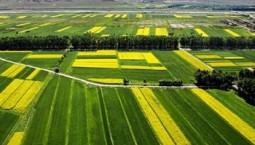 既管當前又管長遠,增強農民發展生產信心 土地承包關系長久不變是重大宣示(政策解讀)