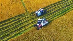 吉林省最新擬定17個高標準農田建設項目!有你家鄉那兒嗎?