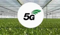 """告別""""土笨粗"""" 5G新技術讓農業擁有無限可能"""