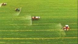 農業農村部:夏糧長勢較好 春播進展順利