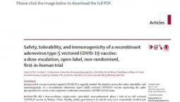《柳葉刀》發布中國新冠疫苗試驗結果:安全、有效!