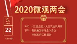 H5丨2020微觀兩會