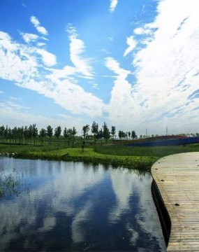 63.8万平方米!亚洲最大再生水湿地公园开建
