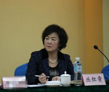 吉林省商务厅原党组书记,厅长丛红霞接受组织审查图片