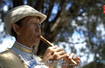 """""""可爱的中国""""之纳西族:追随白沙细乐40余年,他将纳西族文化远播海外"""