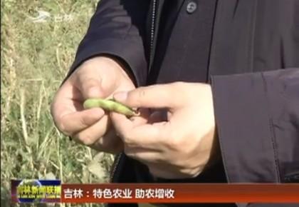 吉林:特色农业 助农增收