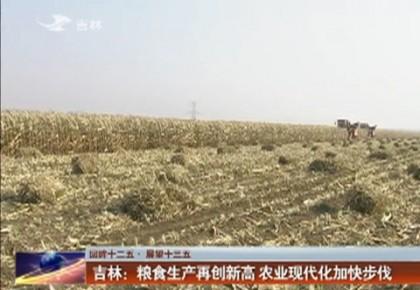 吉林:粮食生产再创新高 农业现代化加快步伐