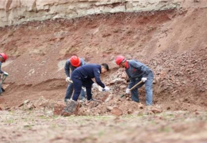 延吉龙山恐龙化石发掘现场发现白垩纪完整鳄类化石